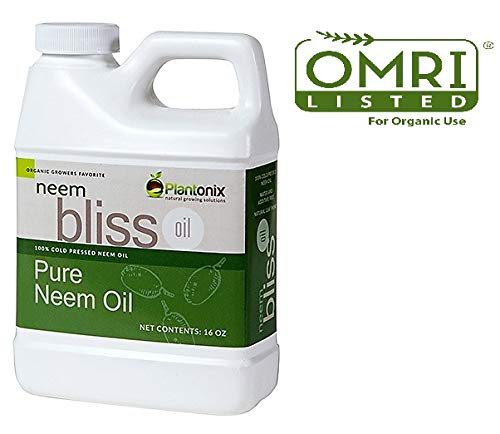 Organic Neem Bliss 100% Pure Cold Pressed Neem Seed Oil - (16 oz)...