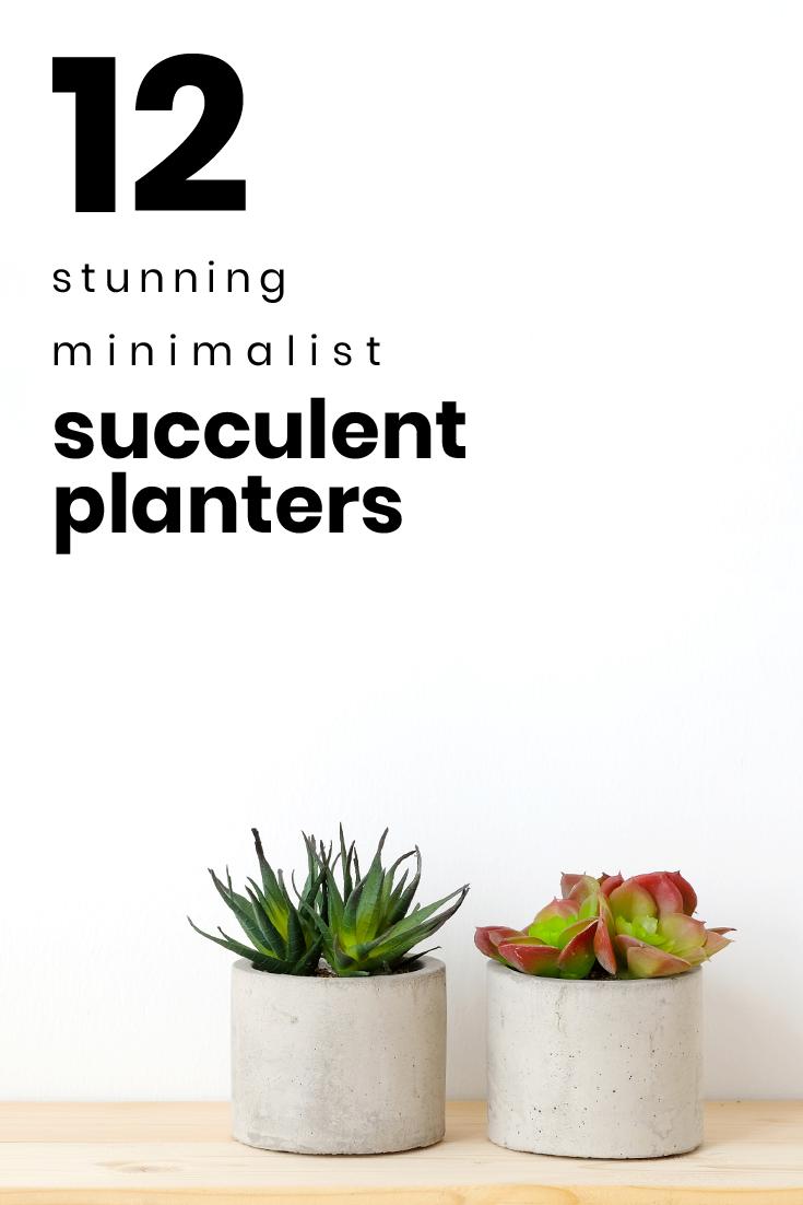 12 Stunning Minimalist Succulent Planters