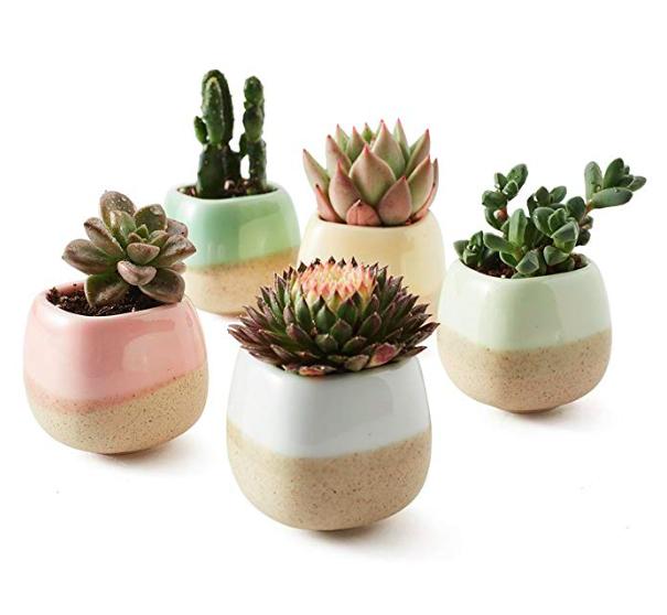 ceramic glaze planter