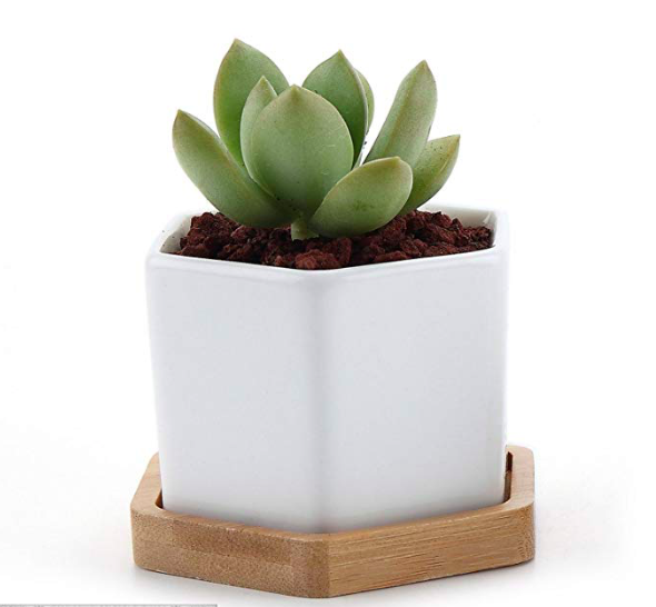 ceramic hexagon planter