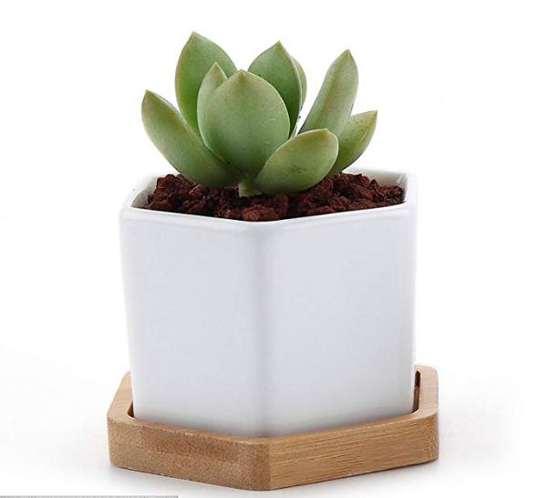 ceramic hexagon planter