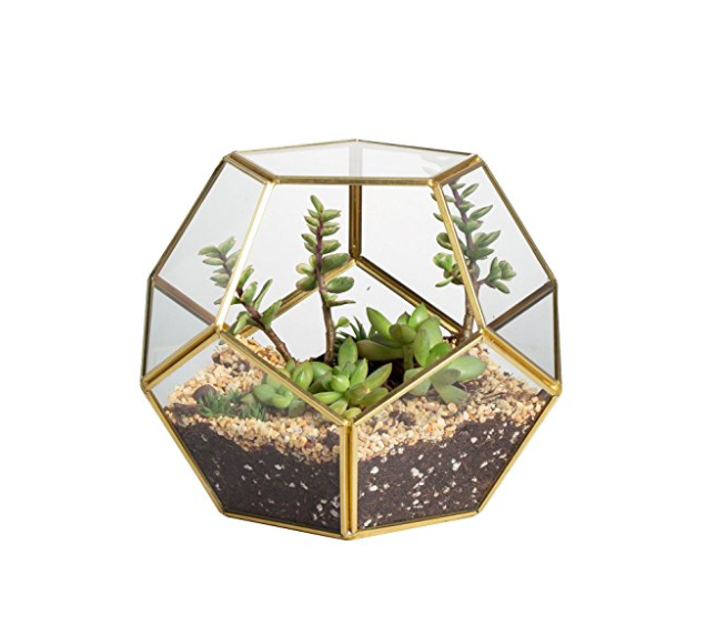 brass and glass geometric terrarium