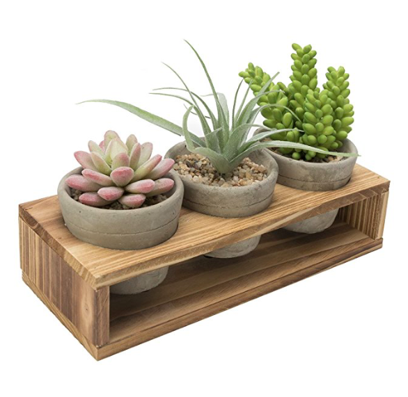 set of 3 cement planters with wood stand
