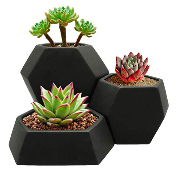 black matte ceramic planter