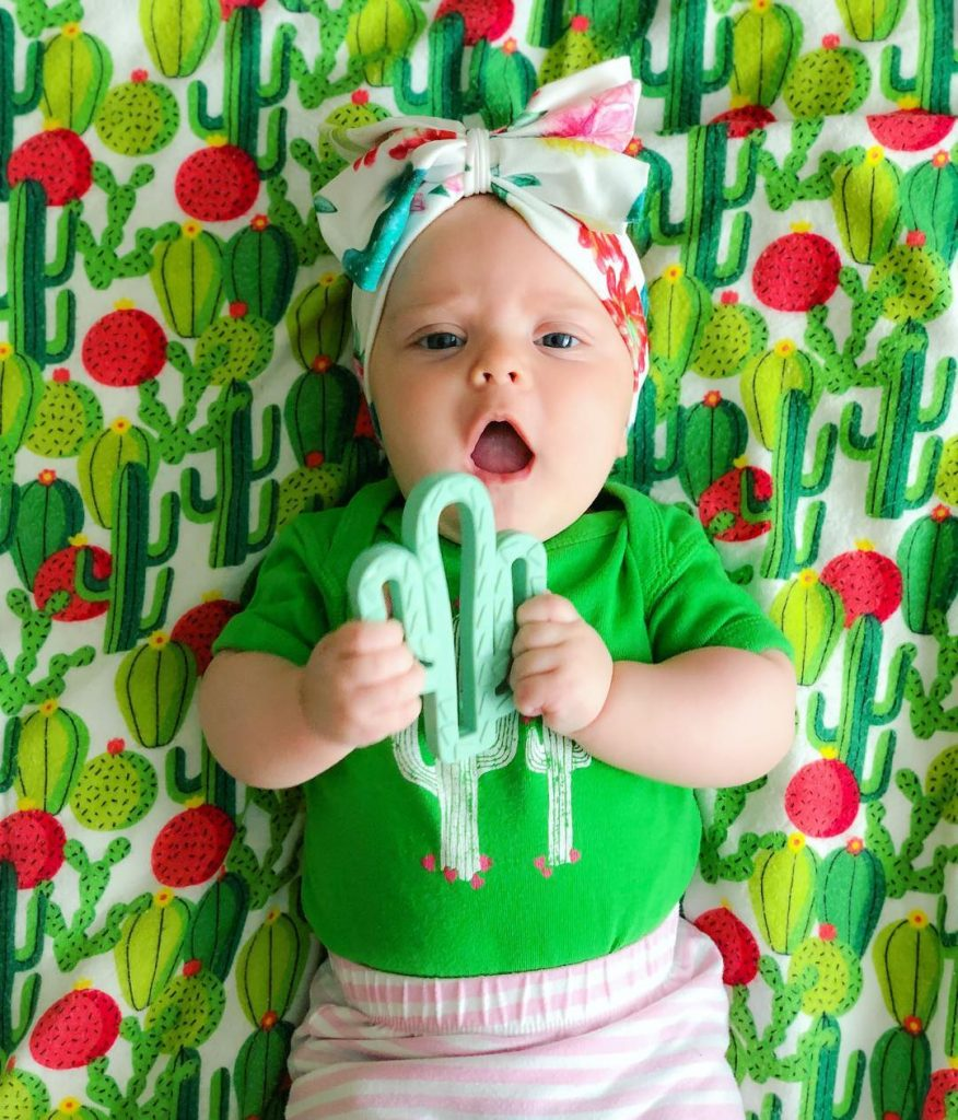 Succulent Cactus Baby Teether Itzy Ritsy