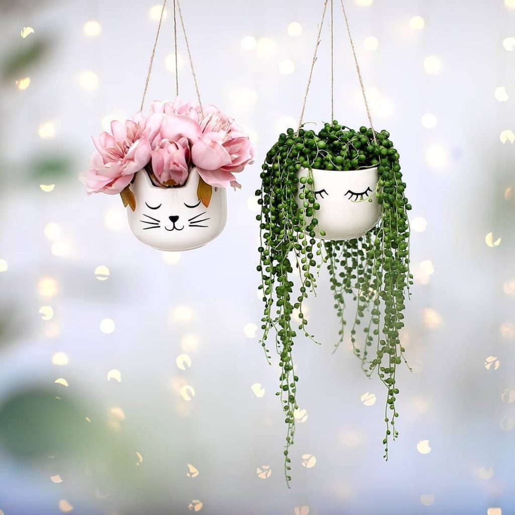 Hanging succulent planters