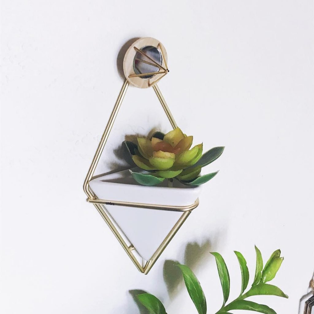 Geometric succulent wallplanter