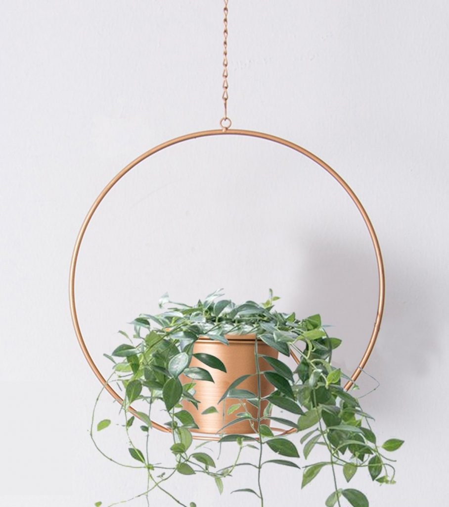 Metal succulent hanging planter