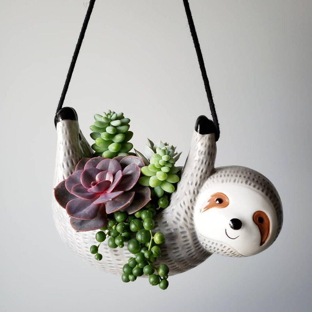 Sloth succulent planter