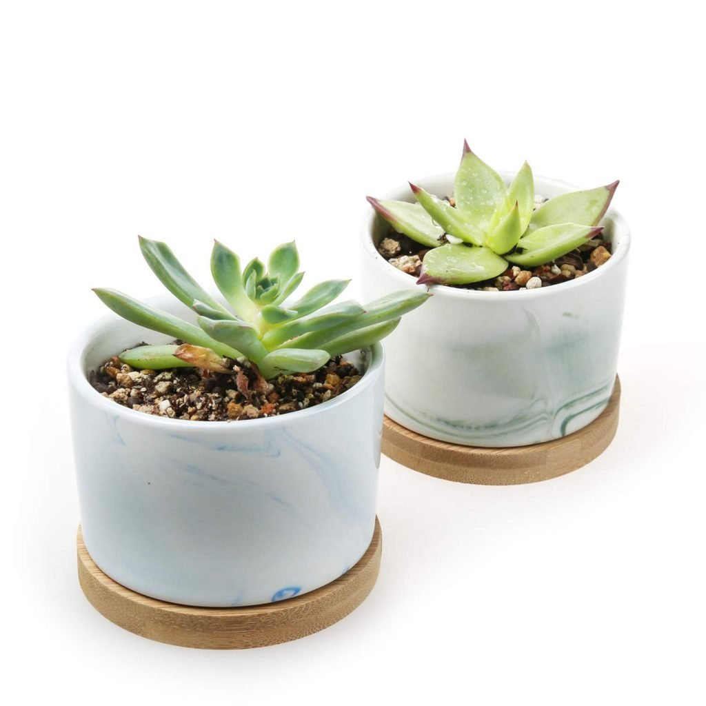 Green and blue marble planters