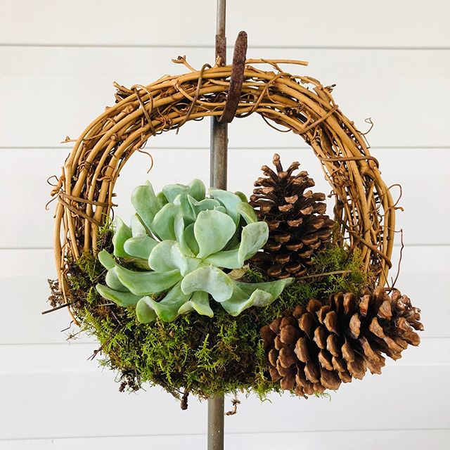 How to Make a Beautiful Succulent Wreath
