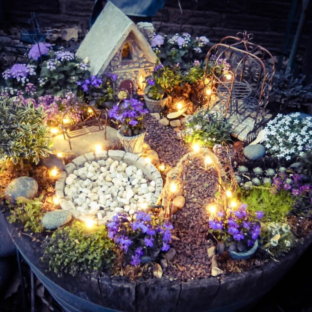 What Is A Fairy Garden/Everything You Need To know Fairy ...