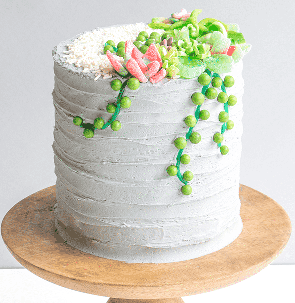6 Succulent Cakes You Wish You Tasted