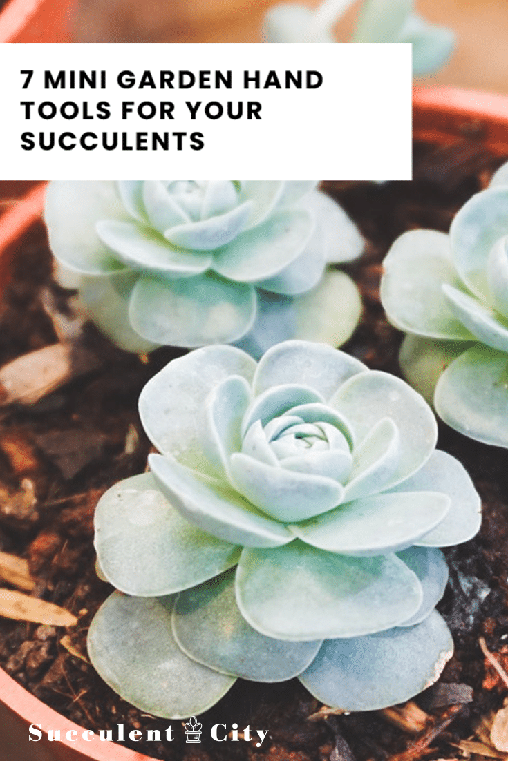 7 Mini Garden Hand Tools For Your Succulents|Succulent City