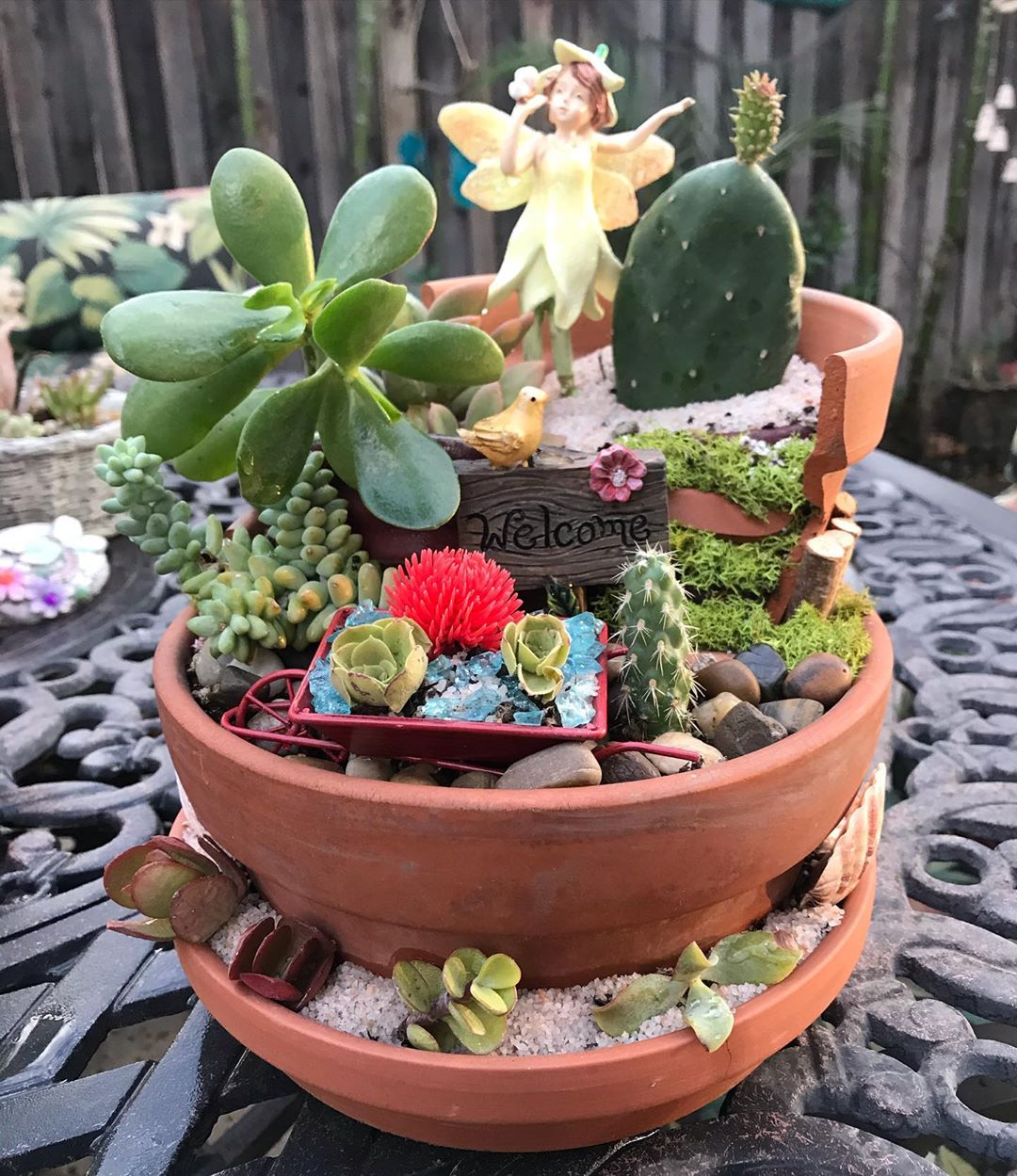 Fairy Garden Ideas Archives Succulent City