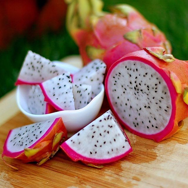 Edible Succulent-Dragon Fruits-SC